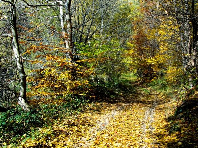 Старият римски път през Средна гора
